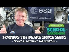 Sean's Allotment Garden: Sowing Tim Peake Space Seeds (S4/EP25)   #groww...