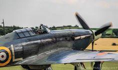 Hawker Hurricane, Supermarine Spitfire, Ww2, Air Force, Aircraft, Sci Fi, Birds, Aviation, Science Fiction