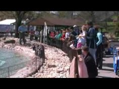 Lehigh Valley Zoo: Lehigh Valley Visions