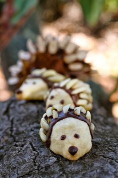 These baby hedgehog cookies are almost too cute to eat. However, they're made from a yummy shortbread recipe, so they're too tasty not to! Hedgehog Cookies, Yummy Treats, Yummy Food, Baby Hedgehog, Shortbread Recipes, French Toast Bake, Looks Yummy, Dessert Recipes, Diet Recipes