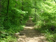 Trails in Fentress County #MakeSummerLast