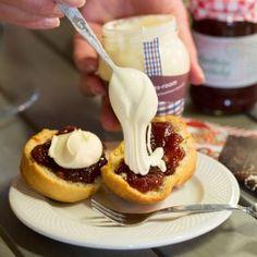 Scones met echte scoontjesroom, het Nederlandse equivalent van clotted cream.