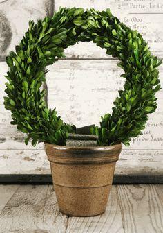 Boxwood Wreath Topiary Preserved $44