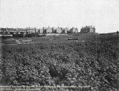 Carlton Road c1915