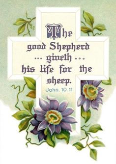 John 10:11   Our Good Shepherd...laid down His life for His sheep...for me.