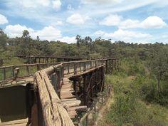 A walkway in Nairobi Safari Walk