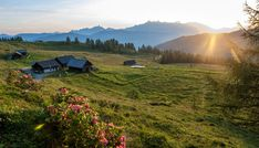 Bungalow Nr. 33 – (d)ein Ferienhaus – alpin. gemütlich. stylish. Bungalow, Workshop, Mountains, Nature, Travel, Cottage House, Places, Vacation, Atelier