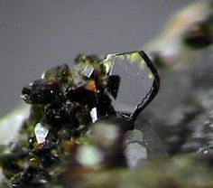 Iowaite & Magnetite  Palabora Mine  Transvaal, South Africa