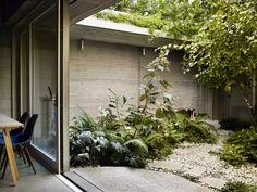 Dan Pearson's timeless courtyard garden for Juergen Teller Dan Pearson, Brutalist Buildings, Juergen Teller, Asian Design, Concrete Garden, Garden Studio, Lush Garden, Garden Path, Gardens
