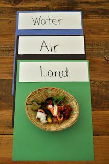 Pet Sort: Water, Air or Land? (from Sorting Sprinkles)