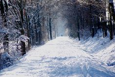 Ein Rosè-Moment ist es für mich, wenn ich nach einem Schnee-Spaziergang gemütlich Zuhause Rotkäppchen genieße.