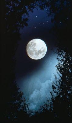 """themagicfarawayttree: """" full moon """""""