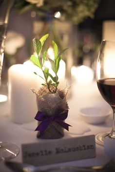 Delivered to NSW, VIC, SA and QLD by Flourish Bomboniere. Plant Wedding Favors, Glass House, Bar Mitzvah, Destination Weddings, Flourish, Eco Friendly, Lavender, Reception, Wedding Day