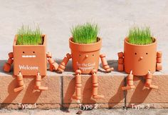 these are great.  The kids would love these robot planters!!