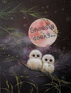 Goeie Nag, Afrikaans Quotes, Fairy Pictures, Good Night Quotes, Bird Art, Qoutes, Teddy Bear, Animals, Quotations