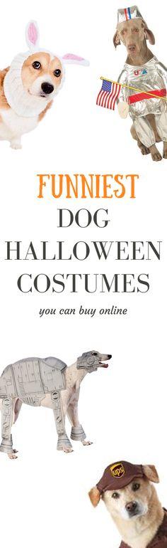 Skip the DIY-Despair and order your dog a Halloween costume online already. Halloween Costumes Pop Culture, Halloween Costumes Online, Diy Dog Costumes, Star Wars Costumes, Halloween Gifts, Halloween Ideas, Dog Fashion, Dog Pin, Dog Bandana