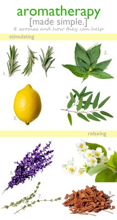 8 Aromatherapy Scents and What They Can Do for You