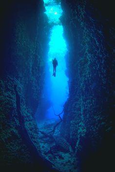 tryintoxpress:   Dive -Peter Pinnock- • ♤♡♢♧ •