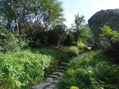 Wyprawa na Rysy, Tatry, Słowacja Hiking, Country Roads, Plants, Walks, Plant, Trekking, Hill Walking, Planets