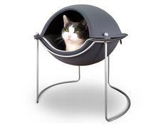 Pod Bed that I bet Sammy would like!