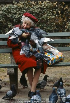 NYC. pigeon lady in Central Park. // By Rob Lang...