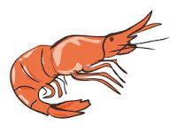 shrimp silhouette graphics fish silhouette pinterest rh pinterest com Simple Fish Clip Art clipart of fish and shrimp