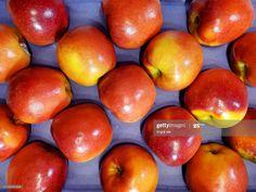 Stock Photo : Neatly arranged boxes of apples Still Image, Apples, Boxes, Army, Stock Photos, Gi Joe, Crates, Military, Box