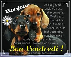 Amour Éternel, Bon Weekend, Dire, Messages, Unique, Movie Posters, Happy Friday, Good Morning Happy Friday, Friday Images