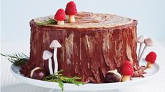 Raspberry Mushrooms on Yule-Log Layer Cake