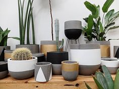 Lush greens look perfectly at home nestled in understated concrete pots from @ontheside_ . The texture and tone of smooth smoke-grey concrete provides a great contrast to your plant collection. Available with white black or gold accents or simply left plain your garden deserves a little seasonal update. #koskela #pots #concretepots #autumn