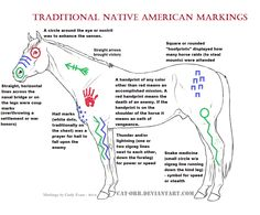 Traditional Native American Horse Markings
