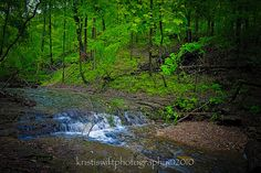 Clifty Falls State Park, Madison, IN  ©2010kristiswiftphotography