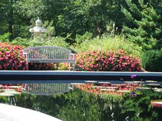 Bench by lily pond at Missouri Botanical Garden
