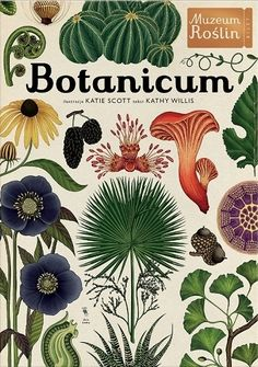 Booktopia has Botanicum : Welcome To The Museum, Welcome To The Museum by Katie Scott. Buy a discounted Hardcover of Botanicum : Welcome To The Museum online from Australia's leading online bookstore. Kew Gardens, Botanical Gardens, Katie Scott, Illustration Botanique, Plant Illustration, Botanical Prints, Botanical Drawings, Welcome, Childrens Books