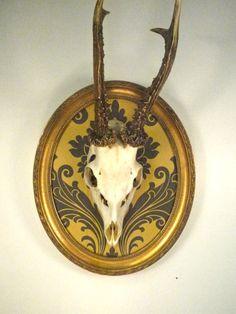 German Roe Deer Skull Antlers Mounted In Vintage Oval Frame. $75.00, via Etsy.