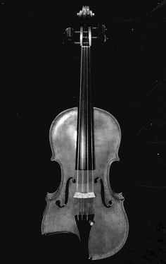 """This is """"NOCHE"""" made in Sarasota, Florida, December Sarasota Florida, Violin, December, Music Instruments, Pretty, Musical Instruments"""