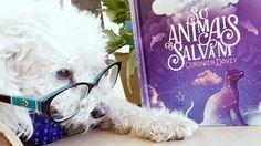 """Livro """"Só Animais os Salvam"""" da DarkSide resenhado por Samira Oliveira (Blog Dezoito em Ponto)"""