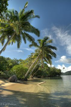 Coastline at Matangi Island Private Resort in the Fiji Islands.