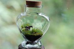 Tiny Horses Moss Love   Terrarium