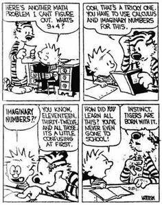 Explore Calvin and Hobbes at their best - rare cartoons, funny pictures, videos, and decide for yourself what the funniest Calvin and Hobbes cartoon is and see what others think. Calvin and Hobbes is my all-time favorite cartoon characters. Math Comics, Math Cartoons, Math Jokes, Math Humor, Bd Comics, Funny Comics, Algebra Humor, Nerd Jokes, Funny Math
