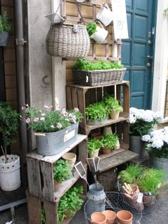 How to Make Your Outdoor Garden Planters Healthy and Beautiful? Small Courtyard Gardens, Small Courtyards, Small Gardens, Outdoor Gardens, Garden Yard Ideas, Garden Spaces, Balcony Garden, Garden Pots, Small Patio