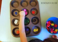 Botones selectoras con un molde para muffins: 14 actividades Montessori para un niño de dos años de edad,