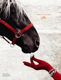 I love everything Hermes, and I am loving long gloves!  -from google images, 'Hermes ads'