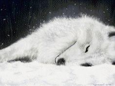"""Le régime broderie """"White Wolf"""" - Plans auteur «Leliana» - Point de Croix   suivez le lien et vous aurez les grilles"""