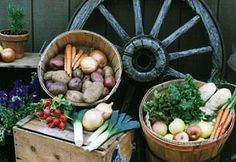 DFW organic produce co-op
