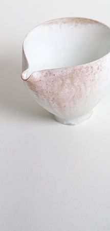 Tabuchi Taro: wood-fired kiln porcelain small side of the story