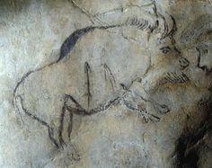 The Altamira cave paintings Ancient History, Art History, History Memes, Art Pariétal, Paleolithic Art, Stone Age Art, Primitive Painting, Art Antique, Art Premier