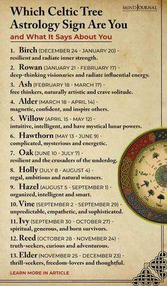 Celtic Paganism, Celtic Symbols, Celtic Signs, Celtic Zodiac Signs, Celtic Words, Witch Symbols, Celtic Druids, Celtic Astrology, Astrology Signs