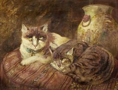 William Huggins, Schildpatt-Katzen