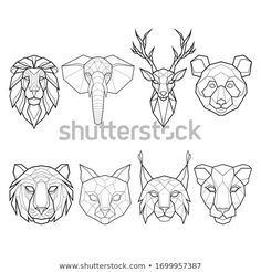 Find Set Eight Polygonal Abstract Animals Lion stock images in HD and millions of other royalty-free stock photos, illustrations and vectors in the Shutterstock collection. Deer Tattoo, Lion Tattoo, Fox Tattoos, Tree Tattoos, Raven Tattoo, Hand Tattoos, Sleeve Tattoos, Art Drawings Sketches, Animal Drawings